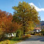 Klinik Sonnenbichl Herbst IX